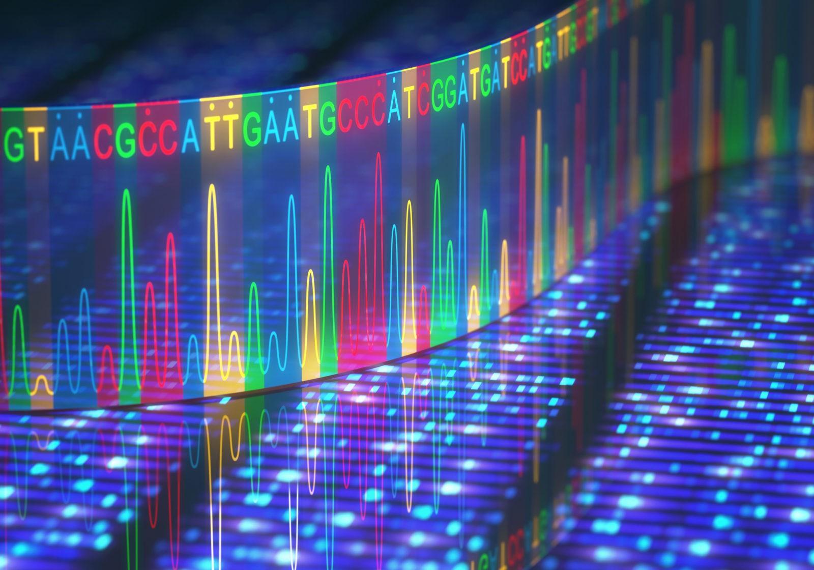 DNA e detox