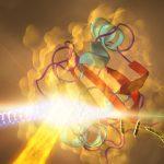 biofisica e biorisonanza
