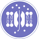 bioimpedenza