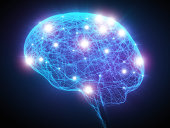 cervello autismo
