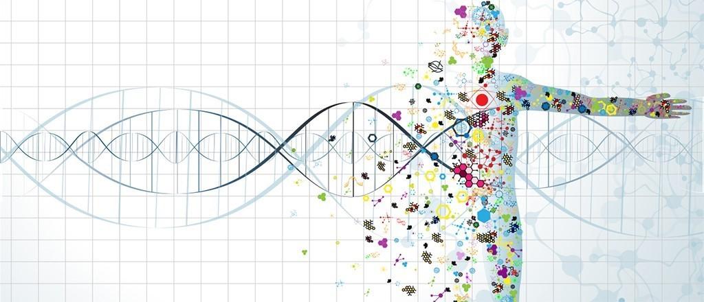 Dieta e DNA