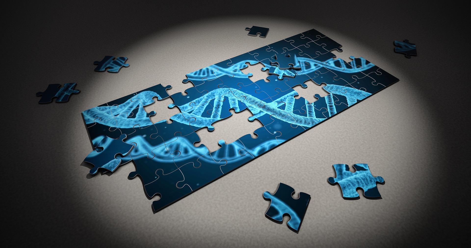 Estrogeni e analisi del DNA
