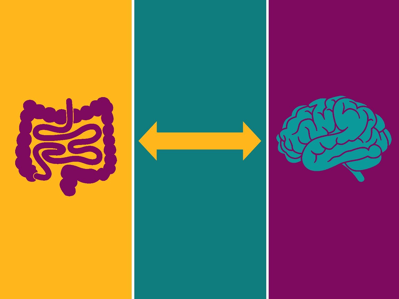 L'intestino: alla scoperta del nostro secondo cervello