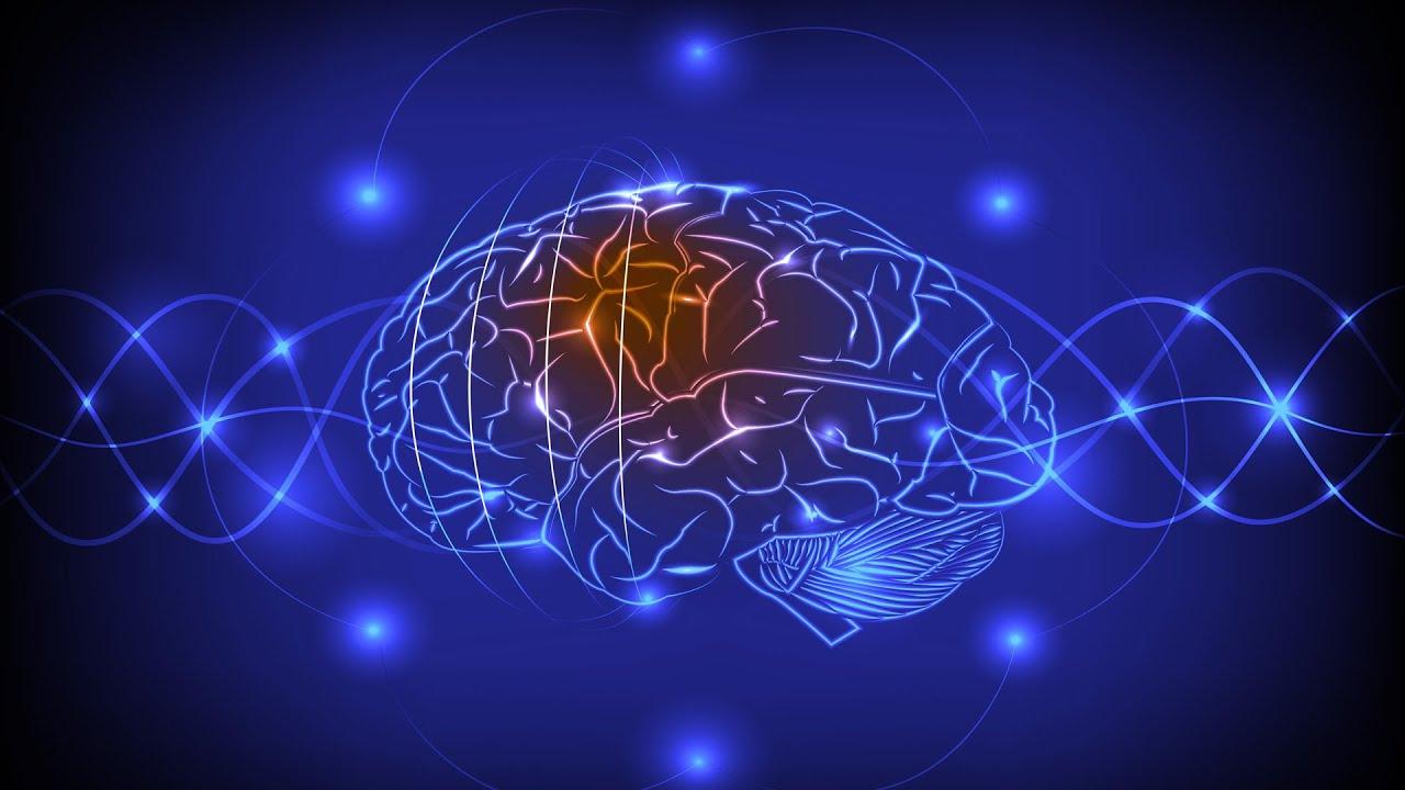 Neurotrasmettitori nello spettro autistico