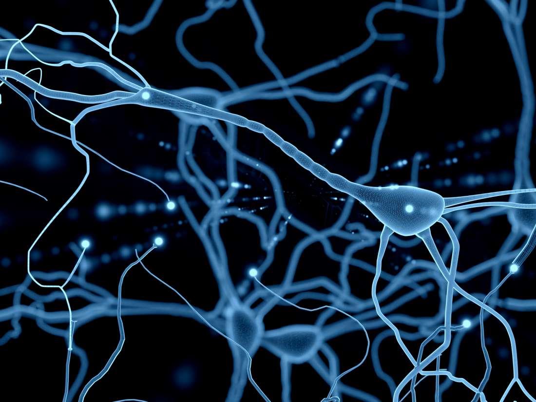 Parkinson: ripartire dalle cellule