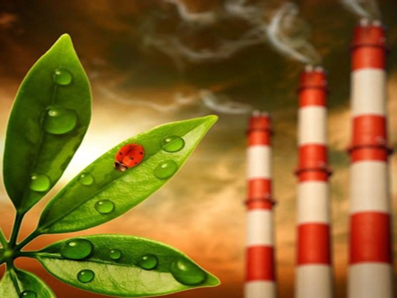 Sensibilità chimica multipla e tossicità