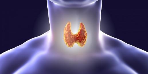 tiroide e inquinanti